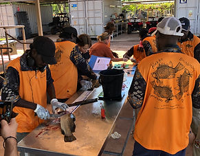 17. Djurrubu Rangers processing fish to