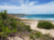 Coastel Conservation.jpg