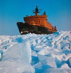 Название «Арктика»
