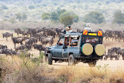 Great Migration safari in Tanzania.jpeg