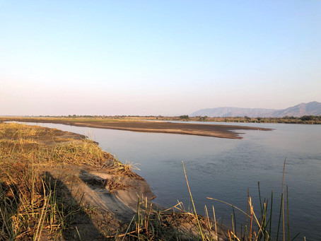 Discover Mana Pools: A place of untouched beauty