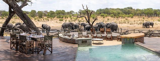 Elephants at Somalisa Camp, Hwange Natio