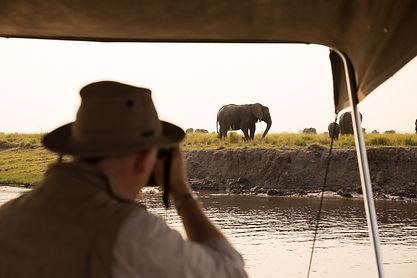 Vayeni Safari Experience.jpg
