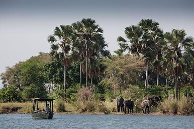 Malawi4.jpg