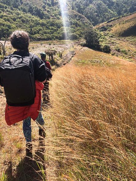 Mt Mulanje Hiking 1.jpg