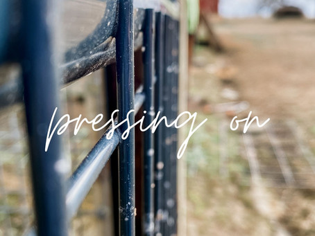 Pressing On to be Faithful Stewards