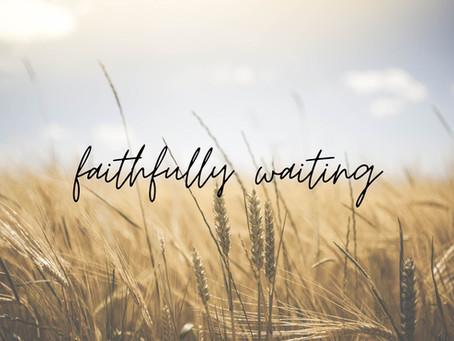 Faithfully Waiting: Our Journey to Envision Acres Farm