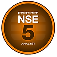 nse5_edited.png