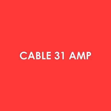 Electric - Cable 31 Amp Per Meter