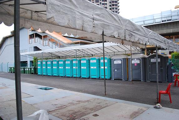 Log - Mobile Toilet-Manhole