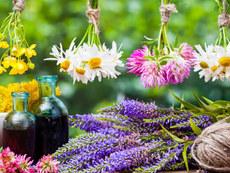 bach flower essence