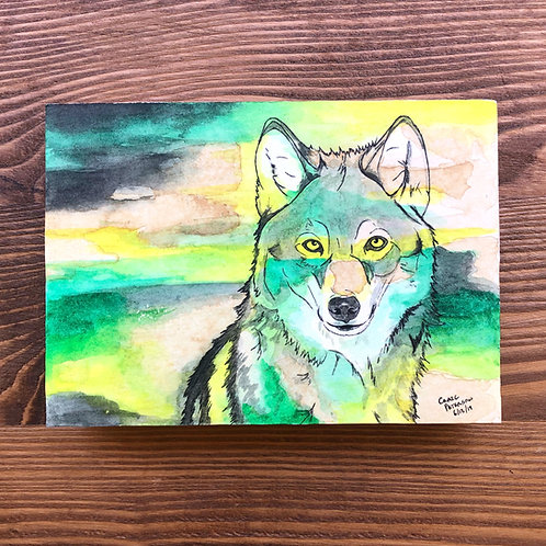 Wolf (Original)