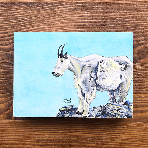 Mountain Goat (Original)