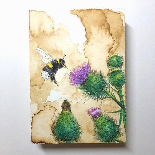 Bumblebee (Original)