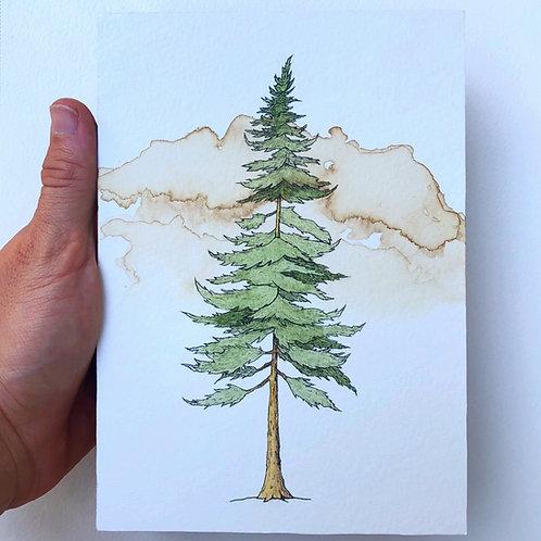 Lone Pine (Original)