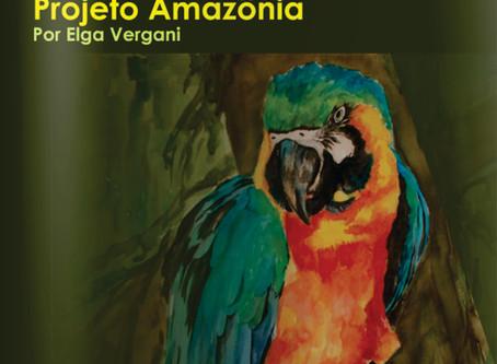 """Catálogo da exposição """"Projeto Amazônia"""" da Artista Elga Vergani"""