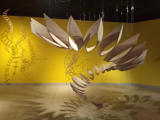 Sesc Tocantins lança editais de Artes Visuais