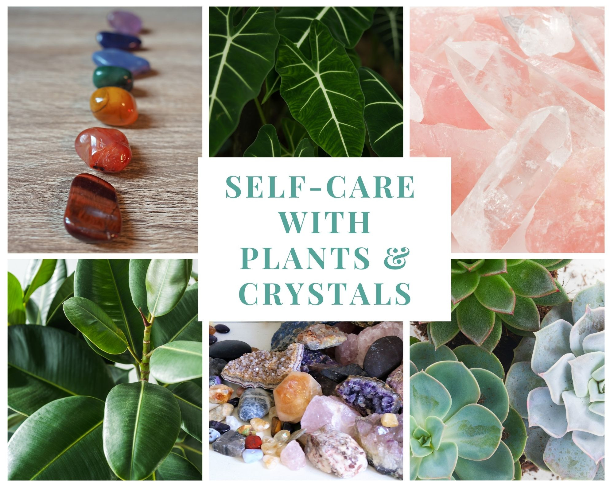 Self Care with Plants & Crystals