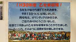 DSC_1670.JPG