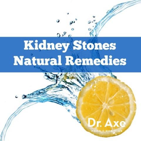kidney-480x480.jpg