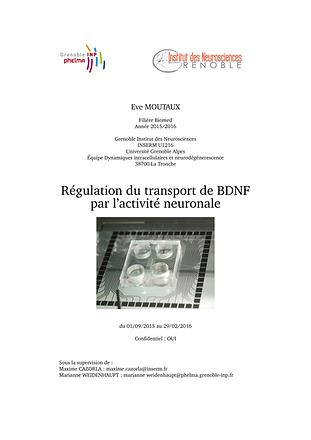Rapport de stage MOUTAUX_Page_01.png