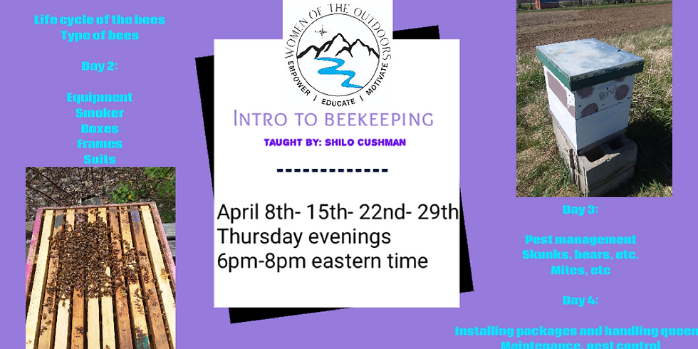 Intro to Beekeeping taught by Shilo Cushman