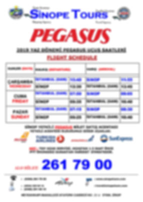 PEGASUS-2019-YAZ-TARİFESİ.jpg