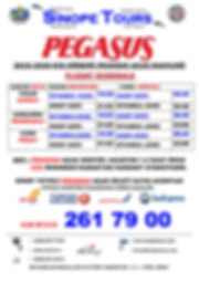 PEGASUS 2020 Kış-JGG.jpg