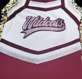 Wildcats Cheer Uniforms