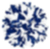 Blue and white poms.JPG