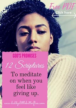 12 scriptures .png