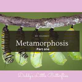 From a Caterpillar to a Butterfly- My Journey (part 1)written by Nicole De Coteau.