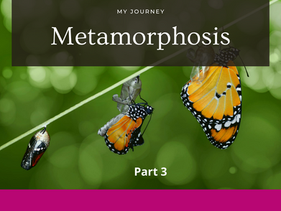 From a caterpillar to a butterfly part 3 by Nicole De Coteau.