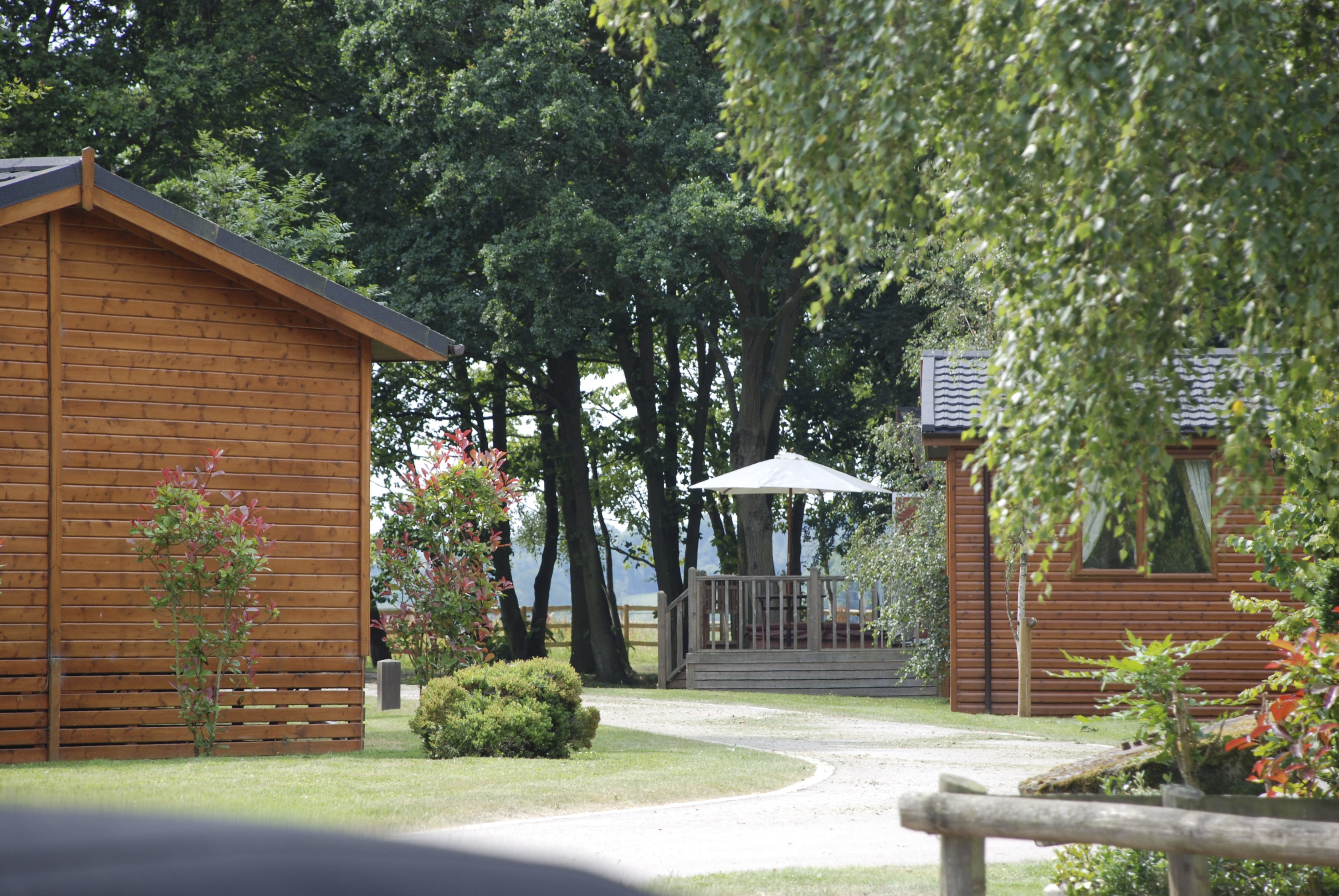 Park View.JPG