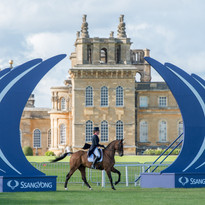 Ssangyon Blenheim Palace Horse Trials.jpg