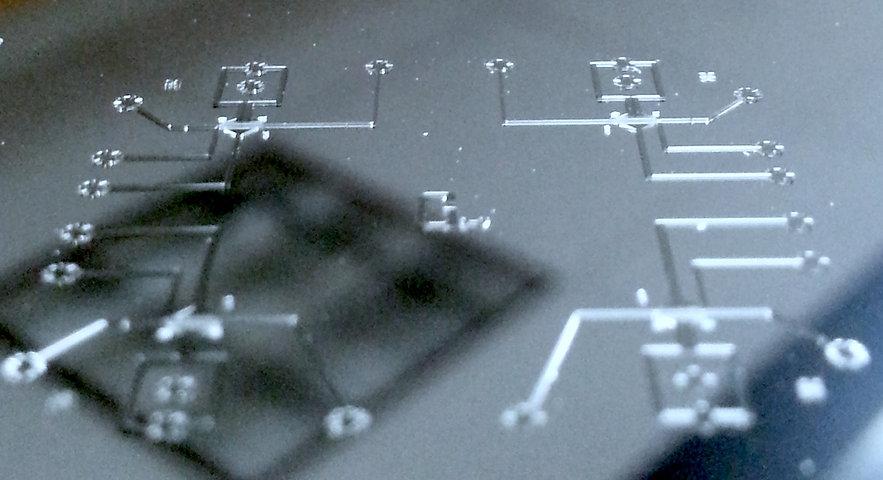WormMicrofluidicsMold-small.jpg