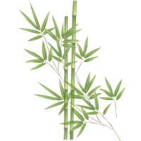 bamboo-group-1.png