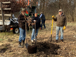 90Trees_Planted
