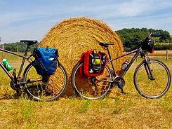 wine-bike-tour-1024x768.jpg