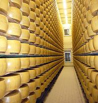 cheese-660551_1920.jpg