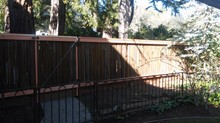 Here's a picture from a recent fence job using reclaimed old-growth redwood grape stakes.
