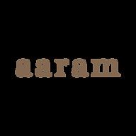 4694_aaram_in_lowercase_Logo_CV_EM_08.pn