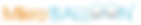 MikroBALLOON_logo_büyük_r-min.png