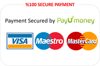 secure payu money.png