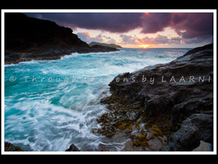 Hawaii Seascapes book is published!