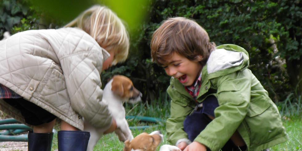 1st International Meeting of TheKidsFellows-  Human-Animal Interactions Research