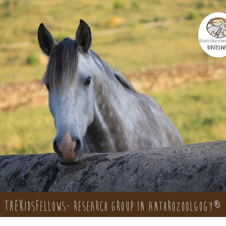I Curso Internacional em Etologia e Ciências da Equitação em Equinos