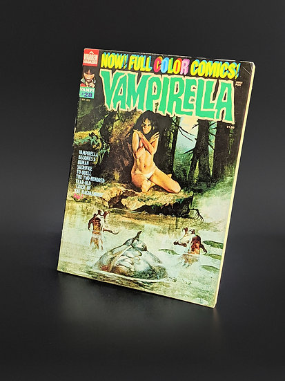 VAMPIRELLA MAGAZINE COMIC #28 VG/F (1973)