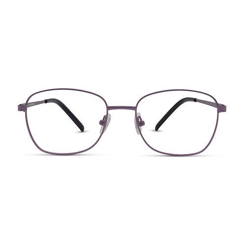 MetroSunnies Dawson Specs