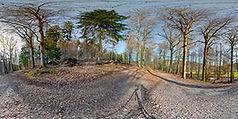 wald- (C) Peter Hennrich_DSC09802 Panora